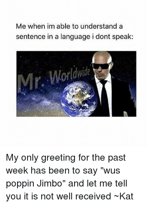 """kat: Me when im able to understand a  sentence in a language i dont speak: My only greeting for the past week has been to say """"wus poppin Jimbo"""" and let me tell you it is not well received ~Kat"""