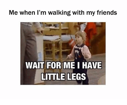 Friends, Memes, and 🤖: Me when I'm walking with my friends  WAIT FOR ME I HAVE  LITTLE LEGS