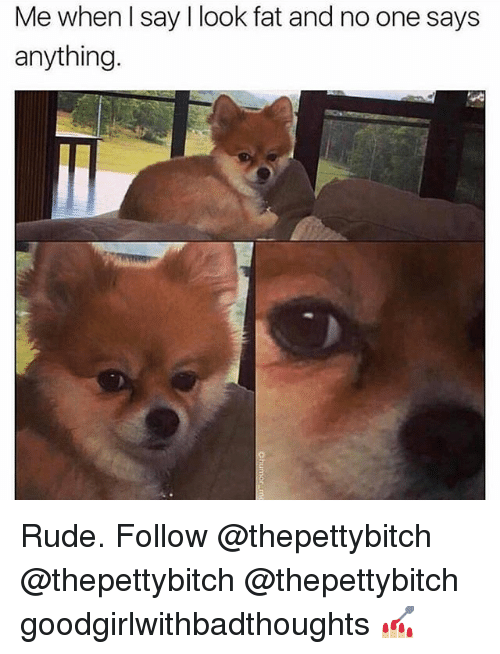 Memes, Rude, and Fat: Me when l say I look fat and no one says  anything Rude. Follow @thepettybitch @thepettybitch @thepettybitch goodgirlwithbadthoughts 💅🏼