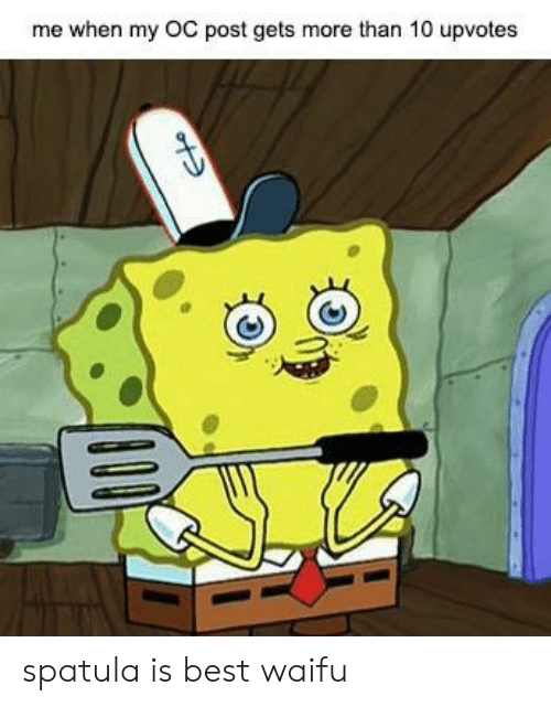 spatula: me when my OC post gets more than 10 upvotes spatula is best waifu