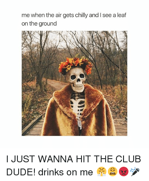 aires: me when the air gets chilly and I see a leaf  on the ground I JUST WANNA HIT THE CLUB DUDE! drinks on me 😤😩😡🎤