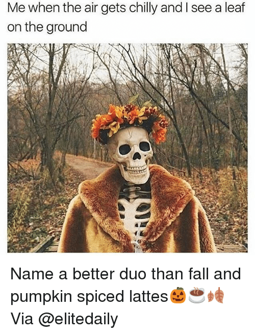 Fall, Funny, and Pumpkin: Me when the air gets chilly and I see a leaf  on the ground Name a better duo than fall and pumpkin spiced lattes🎃☕️🍂 Via @elitedaily