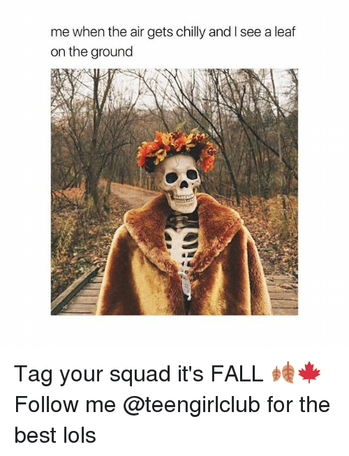 Its Fall: me when the air gets chilly and I see a leaf  on the ground Tag your squad it's FALL 🍂🍁 Follow me @teengirlclub for the best lols