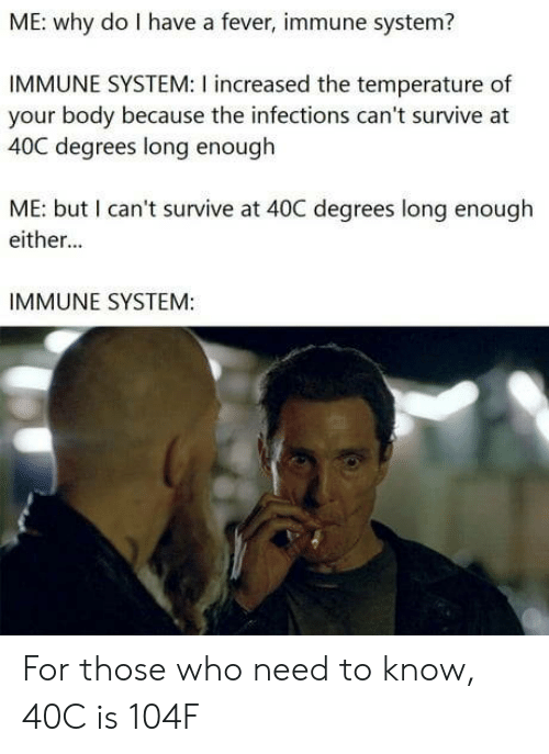 fever: ME: why do I have a fever, immune system?  IMMUNE SYSTEM: I increased the temperature of  your body because the infections can't survive at  40C degrees long enough  ME: but I can't survive at 40C degrees long enough  either...  IMMUNE SYSTEM: For those who need to know, 40C is 104F