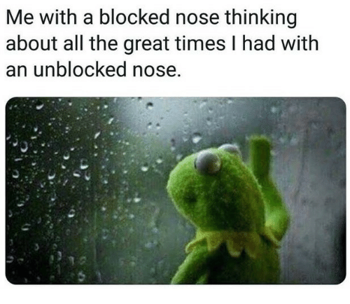 Unblocked: Me with a blocked nose thinking  about all the great times I had with  an unblocked nose.