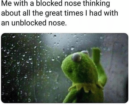 Unblocked: Me with a blocked nose thinking  about all the great times I had with  an unblocked nose,