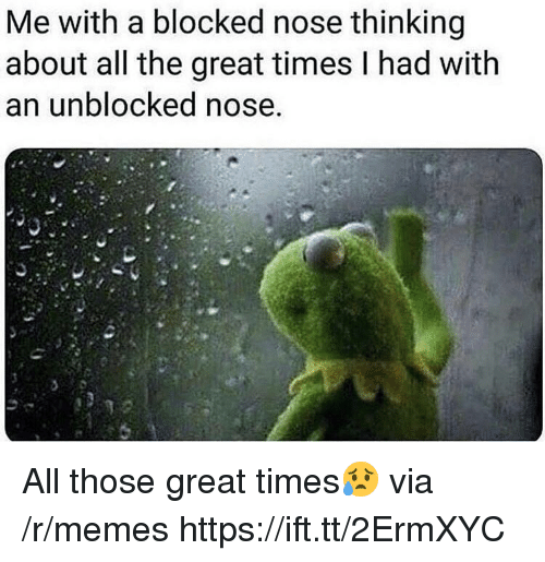Unblocked: Me with a blocked nose thinking  about all the great times l had with  an unblocked nose All those great times😥 via /r/memes https://ift.tt/2ErmXYC