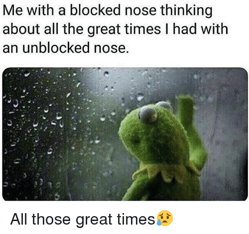 Unblocked: Me with a blocked nose thinking  about all the great times l had with  an unblocked nose All those great times😥