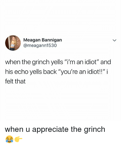 "The Grinch, Appreciate, and Relatable: Meagan Bannigan  @meagann1530  when the grinch yells ""i'm an idiot"" and  his echo yells back ""you're an idiot!!"" i  felt that when u appreciate the grinch 😂👉"