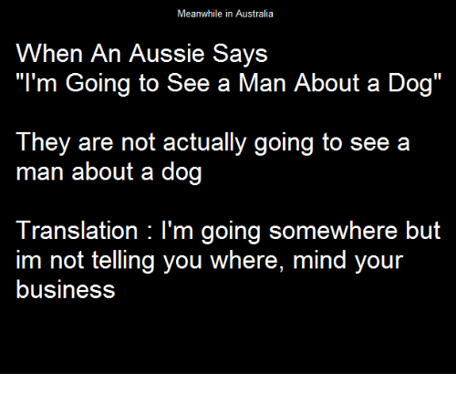 """Meanwhile In Australia: Meanwhile in Australia  When An Aussie Says  """"I'm Going to See a Man About a Dog""""  They are not actually going to see a  man about a dog  Translation: I'm going somewhere but  im not telling you where, mind your  business"""