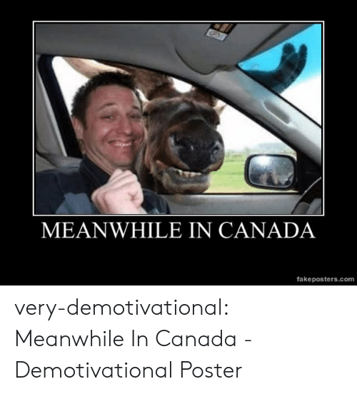 demotivational: MEANWHILE IN CANADA  fakeposters.com very-demotivational:  Meanwhile In Canada - Demotivational Poster