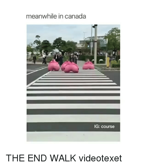 meanwhile in canada: meanwhile in canada  IG: course THE END WALK videotexet