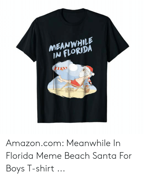Florida Meme: MEANWHILE  IN FLORIDA  Do NOT  pisfE Amazon.com: Meanwhile In Florida Meme Beach Santa For Boys T-shirt ...