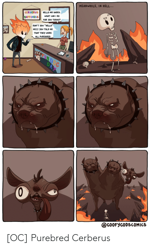 """hades: MEANWHILE, IN HELL...  HELLO MR HADES  WHAT CAN I D0  CERBERUS  HAPPINESS  FOR yoU TODAY?  HH  DON'T yoU """"HELLO""""  ME!!! you TOLD ME  THAT THEY WERE  ALL PUREBRED  REUND  DAY  @G00FYGODSCOMICS [OC] Purebred Cerberus"""