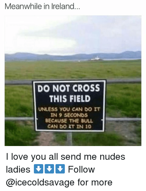 Dank, Love, and Nudes: Meanwhile in Ireland  DO NOT CROSS  THIS FIELD  UNLESS YOU CAN DO IT  IN 9 SECONDS  BECAUSE THE BULL  CAN DO IT IN 10 I love you all send me nudes ladies ⬇️⬇️⬇️ Follow @icecoldsavage for more