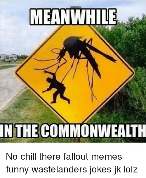 Funny Memes For No : Meanwhile in the commonwealth no chill there fallout memes