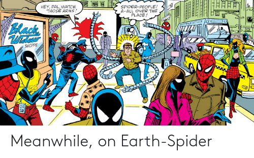 meanwhile: Meanwhile, on Earth-Spider