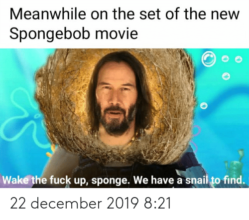 New Spongebob: Meanwhile on the set of the new  Spongebob movie  Wake the fuck up, sponge. We have a snail to find. 22 december 2019 8:21