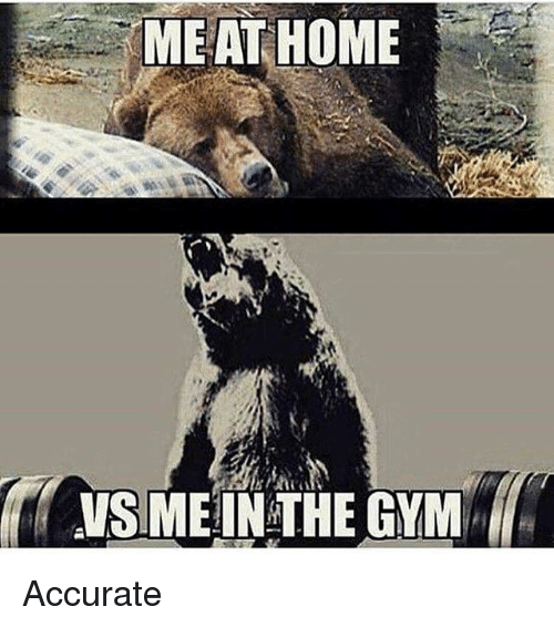 Gym, Memes, and Home: MEAT HOME  VSMEIN THE GYM Accurate
