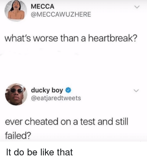 mecca: MECCA  @MECCAWUZHERE  what's worse than a heartbreak?  ducky boy  @eatjaredtweets  ever cheated on a test and still  failed? It do be like that