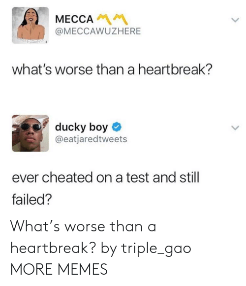 mecca: MECCA  @MECCAWUZHERE  what's worse than a heartbreak?  ducky boy  @eatjaredtweets  ever cheated on a test and still  failed? What's worse than a heartbreak? by triple_gao MORE MEMES