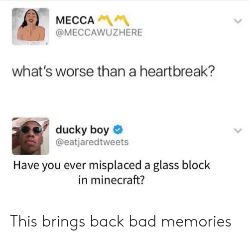 mecca: MECCA  @MECCAWUZHERE  what's worse than a heartbreak?  ducky boy  @eatjaredtweets  Have you ever misplaced a glass block  in minecraft? This brings back bad memories