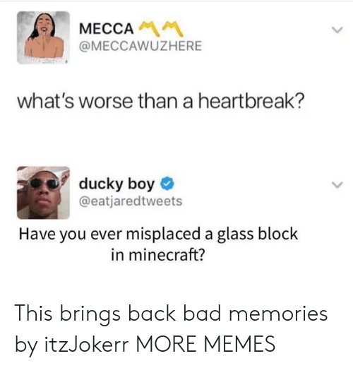 mecca: MECCA  @MECCAWUZHERE  what's worse than a heartbreak?  ducky boy  @eatjaredtweets  Have you ever misplaced a glass block  in minecraft? This brings back bad memories by itzJokerr MORE MEMES