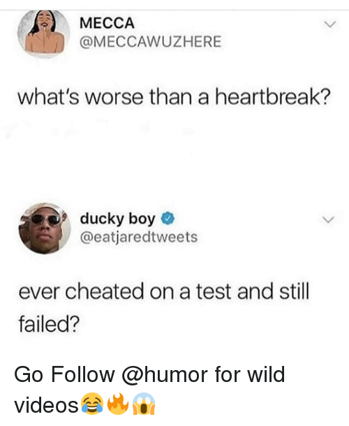 Funny, Videos, and Test: MECCAAWUZHERE  what's worse than a heartbreak?  ducky boy  @eatjaredtweets  ever cheated on a test and still  failed? Go Follow @humor for wild videos😂🔥😱