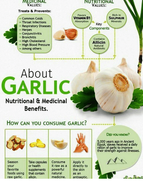 Foods High In Vitamins Garlic