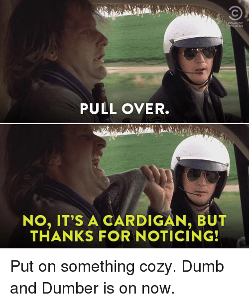 Dank, Dumb, and Dumb and Dumber: MEDY  PULL OVER.  NO, IT'S A CARDIGAN, BUT  THANKS FOR NOTICING! Put on something cozy. Dumb and Dumber is on now.