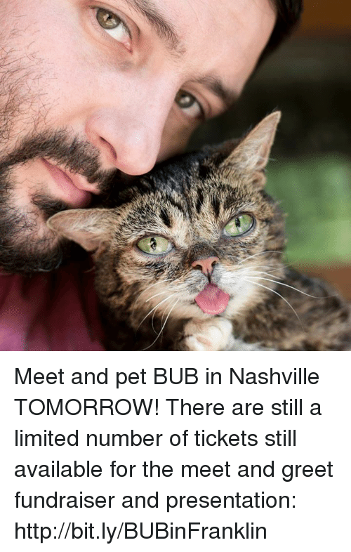 Memes, Http, and Limited: Meet and pet BUB in Nashville TOMORROW! There are still a limited number of tickets still available for the meet and greet fundraiser and presentation: http://bit.ly/BUBinFranklin