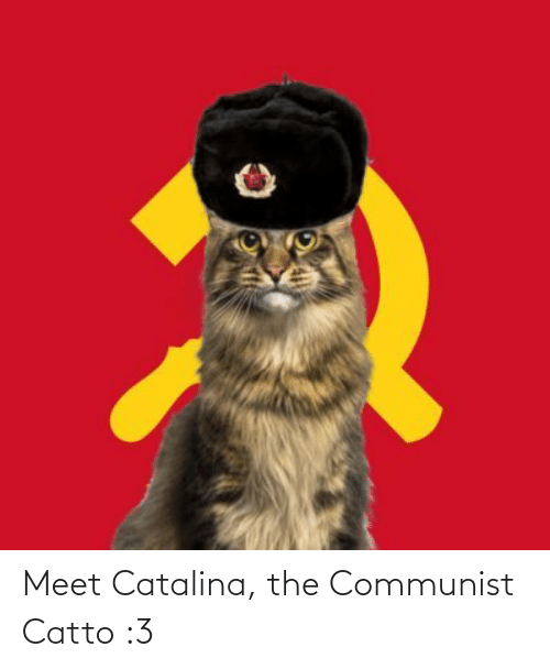 catalina: Meet Catalina, the Communist Catto :3