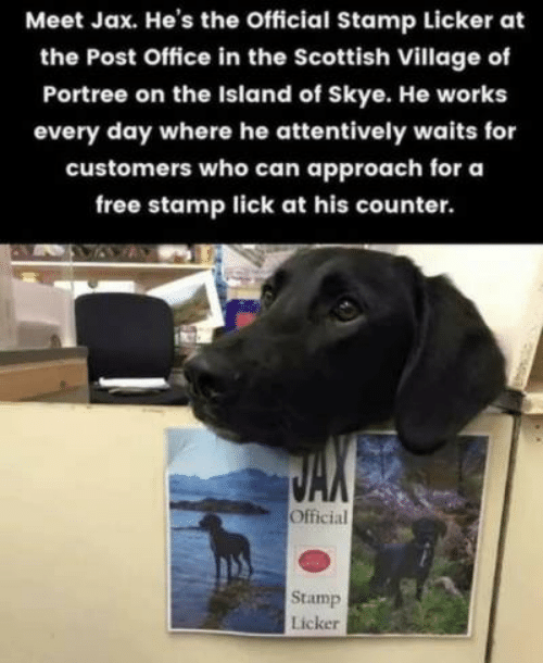 stamp: Meet Jax. He's the Official Stamp Licker at  the Post Office in the Scottish Village of  Portree on the Island of Skye. He works  every day where he attentively waits for  customers who can approach for a  free stamp lick at his counter.  Official  Stamp  Licker