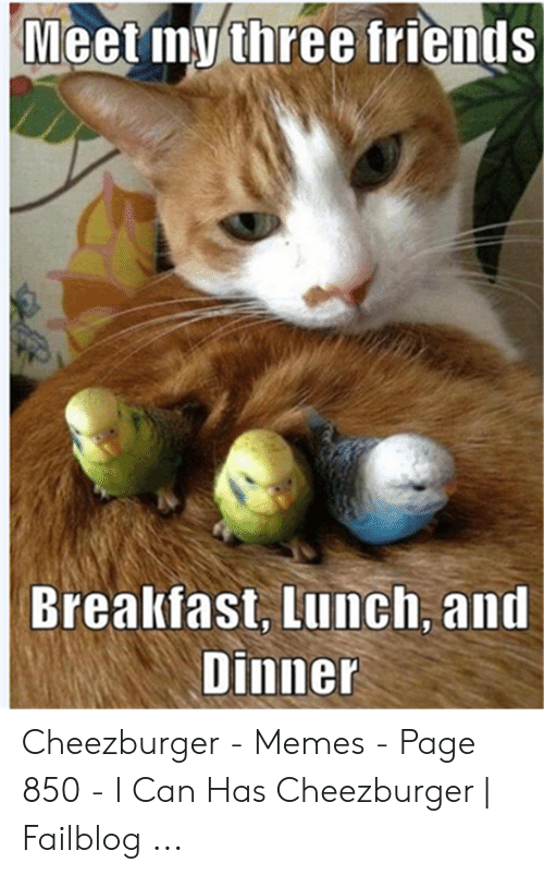 Funny Hungry Memes: Meet mythree friends  Brealkfast, Lunch, and  Dinner Cheezburger - Memes - Page 850 - I Can Has Cheezburger   Failblog ...