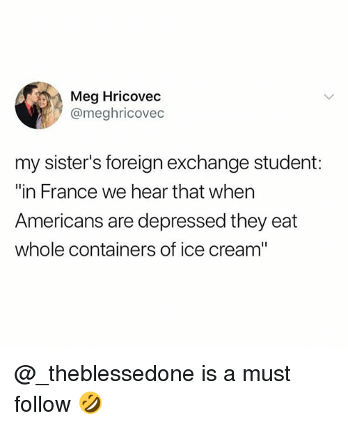 """foreign exchange: Meg Hricovec  @meghricovec  my sister's foreign exchange student:  """"in France we hear that when  Americans are depressed they eat  whole containers of ice cream"""" @_theblessedone is a must follow 🤣"""