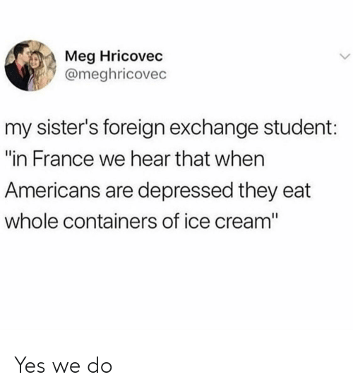 """foreign exchange: Meg Hricovec  @meghricovec  my sister's foreign exchange student:  """"in France we hear that when  Americans are depressed they eat  whole containers of ice cream"""" Yes we do"""