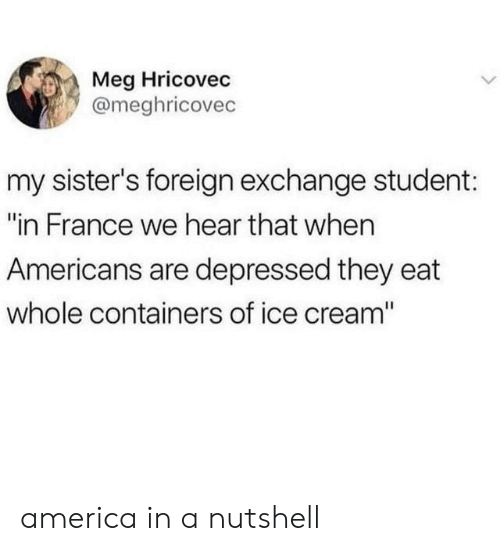"""of ice: Meg Hricovec  @meghricovec  my sister's foreign exchange student:  """"in France we hear that when  Americans are depressed they eat  whole containers of ice cream"""" america in a nutshell"""