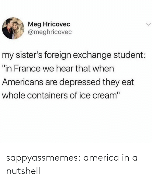 """of ice: Meg Hricovec  @meghricovec  my sister's foreign exchange student:  """"in France we hear that when  Americans are depressed they eat  whole containers of ice cream"""" sappyassmemes:  america in a nutshell"""