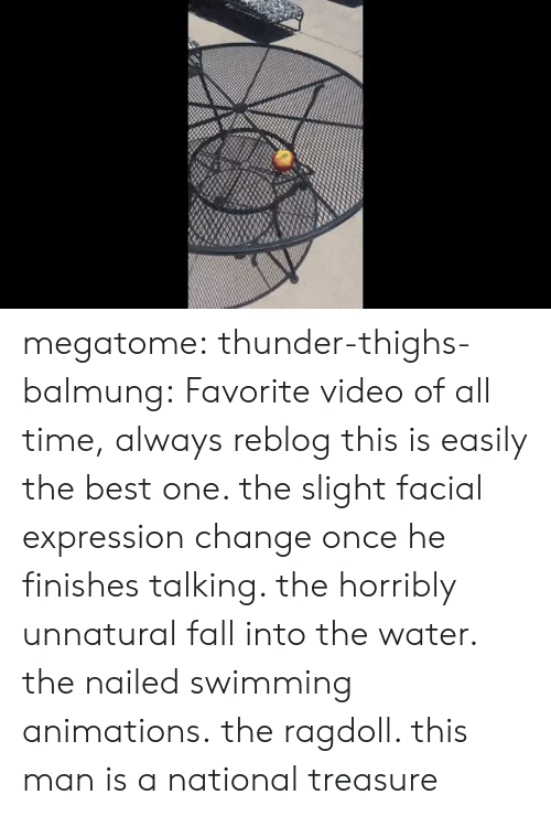facial-expression: megatome:  thunder-thighs-balmung: Favorite video of all time,  always reblog this is easily the best one. the slight facial expression change once he finishes talking. the horribly unnatural fall into the water. the nailed swimming animations.   the ragdoll. this man is a national treasure