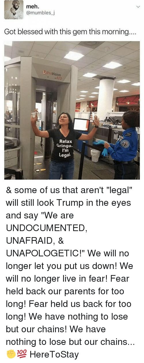 """provisions: meh.  @mumbles j  Got blessed with this gem this morning.  Provision  Relax  Gringo  I'm  Legal & some of us that aren't """"legal"""" will still look Trump in the eyes and say """"We are UNDOCUMENTED, UNAFRAID, & UNAPOLOGETIC!"""" We will no longer let you put us down! We will no longer live in fear! Fear held back our parents for too long! Fear held us back for too long! We have nothing to lose but our chains! We have nothing to lose but our chains...✊💯 HereToStay"""