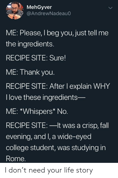 crisp: MehGyver  @AndrewNadeauC  ME: Please, I beg you, just tell me  the ingredients.  RECIPE SITE: Sure  ME: Thank you.  RECIPE SITE: After lI explain WHY  I love these ingredients-  ME: *Whispers* No.  RECIPE SITE: -lt was a crisp, fall  evening, and I, a wide-eyed  college student, was studying in  Rome. I don't need your life story