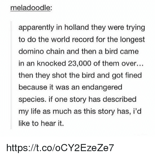 Apparently, Life, and Record: meladoodle:  apparently in holland they were trying  to do the world record for the longest  domino chain and then a bird came  in an knocked 23,000 of them over...  then they shot the bird and got fined  because it was an endangered  species. if one story has described  my life as much as this story has, i'd  like to hear it. https://t.co/oCY2EzeZe7