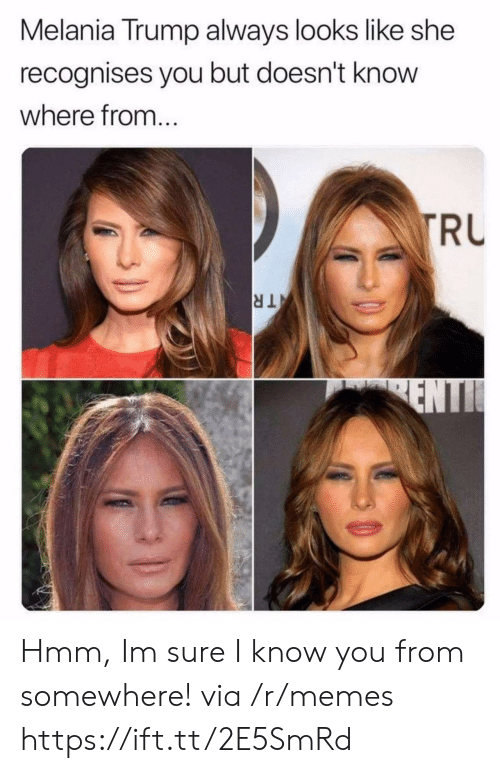 Melania: Melania Trump always looks like she  recognises you but doesn't know  where from..  RU Hmm, Im sure I know you from somewhere! via /r/memes https://ift.tt/2E5SmRd