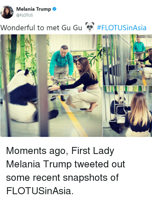 Melania Trump, Memes, and Trump: Melania Trump .  @FLOTUS  Wonderful to met Gu Gu  Moments ago, First Lady Melania Trump tweeted out some recent snapshots of FLOTUSinAsia.