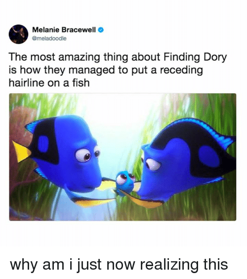 Hairline, Memes, and Fish: Melanie Bracewell  @meladoodle  The most amazing thing about Finding Do  is how they managed to put a receding  hairline on a fish why am i just now realizing this