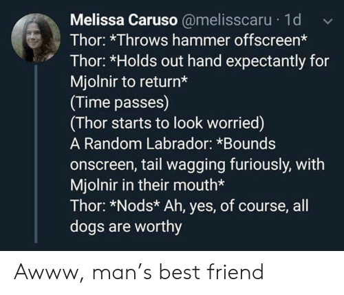 Awww: Melissa Caruso @melisscaru 1d  Thor: *Throws hammer offscreen*  Thor: *Holds out hand expectantly for  Mjolnir to return*  (Time passes)  (Thor starts to look worried)  A Random Labrador: *Bounds  onscreen, tail wagging furiously, with  Mjolnir in their mouth*  Thor: *Nods* Ah, yes, of course, all  dogs are worthy Awww, man's best friend