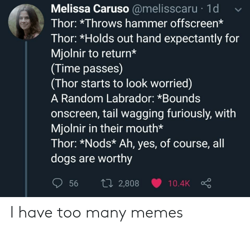 mjolnir: Melissa Caruso @melisscaru 1d  Thor: *Throws hammer offscreen*  Thor: *Holds out hand expectantly for  Mjolnir to return*  (Time passes)  (Thor starts to look worried)  A Random Labrador: *Bounds  onscreen, tail wagging furiously, with  Mjolnir in their mouth*  Thor: *Nods* Ah, yes, of course, all  dogs are worthy  1i2,808  56  10.4K I have too many memes