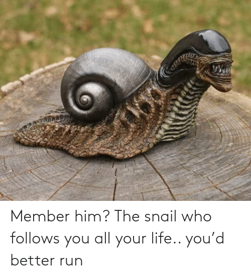 your life: Member him? The snail who follows you all your life.. you'd better run