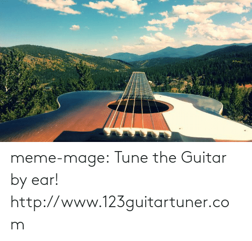 meme: meme-mage:    Tune the Guitar by ear!  http://www.123guitartuner.com