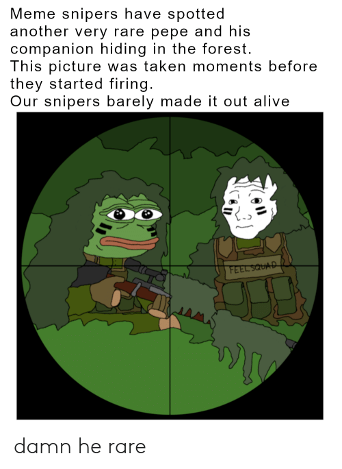 Rare Pepe: Meme snipers have spotted  another very rare pepe and his  companion hiding in the forest.  This picture was taken moments before  they started firing.  Our snipers barely made it out alive  FEEL SQUAD damn he rare